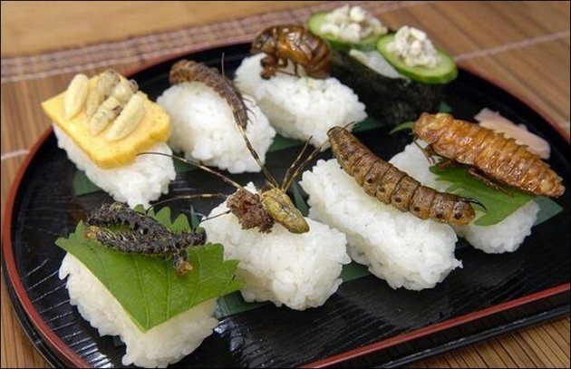 shoichi-uchiyama03